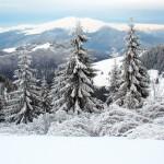 winter-carpathian